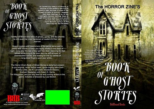 Horror Zine Book of Ghost Stories cover